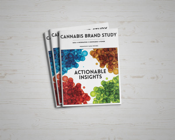 brand-study-front-cover-600x48_20210406-184040_1