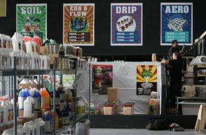 marijuana-store-signage-1-300x19_20210407-045137_1